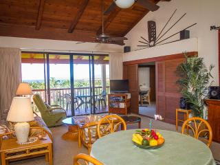 Fully Furnished Vacation Condo-Apartments - R&R