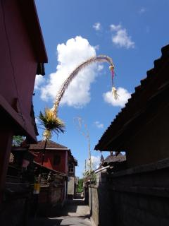 Next street view. Walk to Mas and visit a traditional Balinese village - Angel Villa Bali