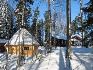 The Lapland kota, for ten persons, fireplace  - Olli
