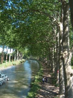 Canal du Midi minutes from Chez Les Roses. Rent boats, walk or bike on renown path along canal. - Judy and Frank Pagano