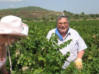 Time to harvest the grapes !  2013 was the best year in over 50 years for local wines. Come & taste! - Judy and Frank Pagano