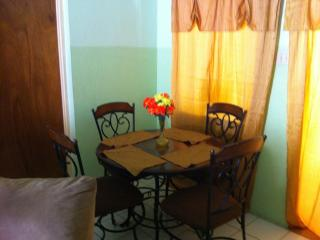 Danishie's Place - Spanish Town vacation rentals