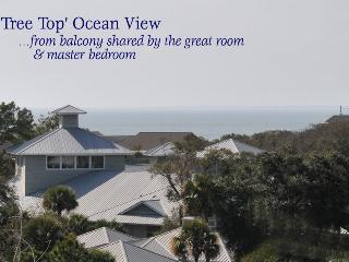 Tree top ocean view from balcony - Kelsey Cottages
