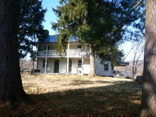 Demory-Wortman House - Blue Ridge Center for Environmental Stewardship