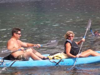 Kayaking with the Dolphins! - Lynette Byrne