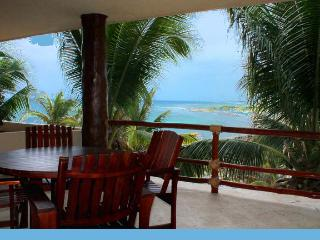 Beautiful Private Condo w/view & huge terrace #403 - Majahual vacation rentals