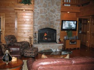 Great Room fire place with 40 inch plasma TV - Andy Wells