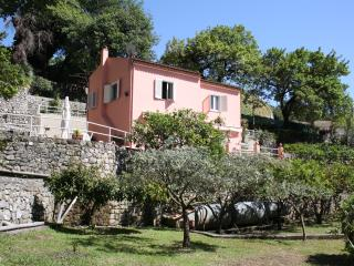 Margherita - 3619 - Maratea - Basilicata vacation rentals