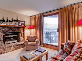 Bronze Tree B301 - Steamboat Springs vacation rentals