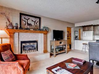 Bronze Tree B305 - Steamboat Springs vacation rentals