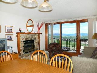 Bronze Tree B503 - Steamboat Springs vacation rentals