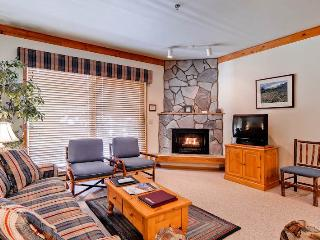 Snow Flower 306 - Steamboat Springs vacation rentals