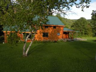 Rustic Riverfront Log Home on the Delaware - Catskills vacation rentals