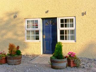 CARIAD COTTAGE, pet-friendly wheelchair-friendly cottage in countryside, woodburner, hot tub, Cilcennin, Aberaeron Ref 914947 - Ceredigion vacation rentals
