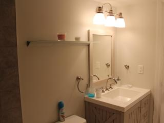 Chic And Spacious 1BD on Jasper Ave - Edmonton vacation rentals
