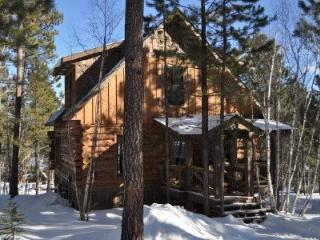 Log Cabin Lodge - New Listing! - Lead vacation rentals