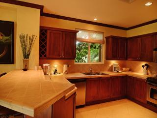 Bay Residence 9C, Los Suenos Resort - Pennsylvania vacation rentals