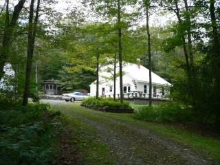Quiet, charming, wooded and secluded get-a-way - Catskills vacation rentals