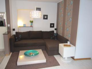 Next to the border between France and Switzerland, modern apartment - Bern vacation rentals