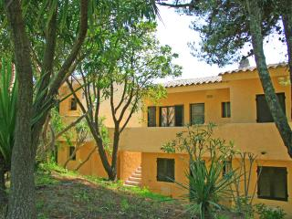 In the heart of Corsica, apartment with swimming-pool 800 m from the beach - Corsica vacation rentals