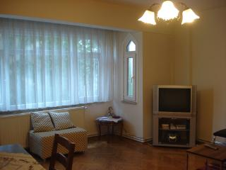 Calm and comfortable city apartment in the heart of Istanbul - Istanbul vacation rentals