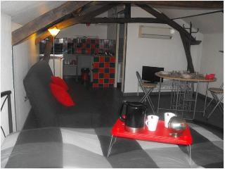 Right in the heart of the Pas-de-Calais, luxury studio with terrace and garden - Nord-Pas-de-Calais vacation rentals