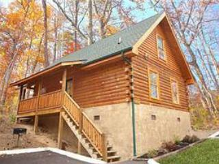 Git - R - Done - Image 1 - Pigeon Forge - rentals