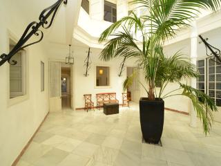 andalusian town house apartment - Jerez De La Frontera vacation rentals