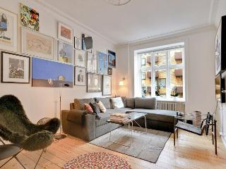 Lovely and bright Copenhagen apartment near the beach - Copenhagen vacation rentals