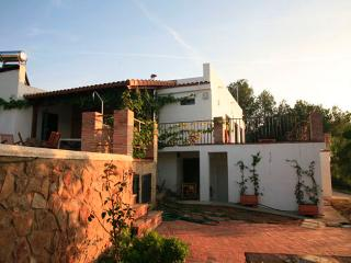 Next to Valencia, character chalet with garden and swimming pool - Valencia Province vacation rentals