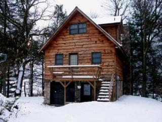 Eller's Tranquility -restful cabin with river view - Lansing vacation rentals