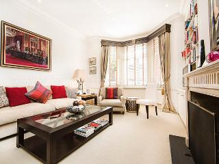 Superb Chelsea apartment close to river thames! - London vacation rentals