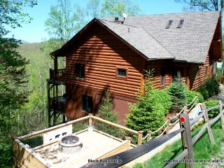 NEXT WEEK ONLY 1400*Custom Cabin*VIEW*Hottub - Valle Crucis vacation rentals