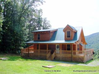 NEW LOG CABIN*VIEW*HOTTUB*FIREPIT*FOOSBALL*AC - Sugar Grove vacation rentals