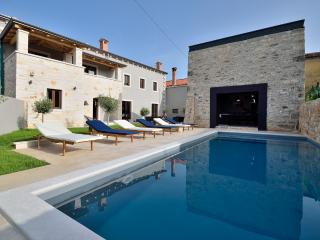 Vila Vira - modern Istrian style vila in peaceful village ideal for families - Sveti Petar u Sumi vacation rentals