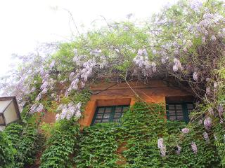 Piede charming apartment - Rome vacation rentals