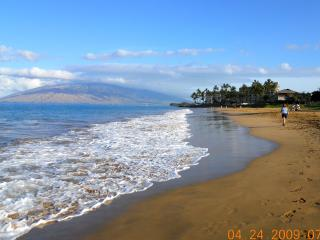 Spacious, Ocean View, 2B, 2Bath, Top Cornor Unit, Walk To The Beach, Walking Distance To Restaurants, Shopping - Wailea-Makena vacation rentals