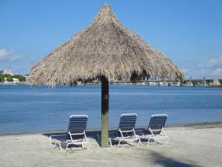 What Are You WADING For?~Visit Isla del Sol - Saint Petersburg vacation rentals