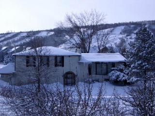 6 Bedroom Executive Chalet with Hot Tub - Blue Mountains vacation rentals