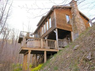NF 19 - 349 Brookside Road - Canaan Valley vacation rentals