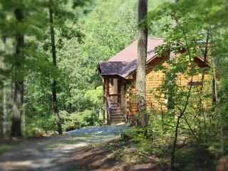 A Rustic-chic Cabin Near Shenandoah National Park - Stanardsville vacation rentals