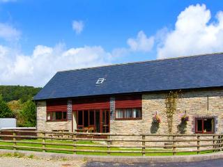GLANYRAFON, spacious family base, views, flexible bedrooms, in countryside near Rhayader, Ref 12670 - Mid Wales vacation rentals