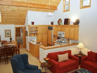 Riverview Condo 2D - Southwest Colorado vacation rentals