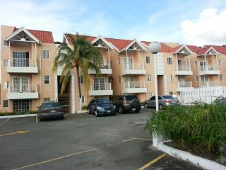 Lunas guest house - Kingston vacation rentals