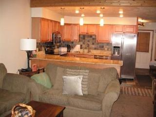 Beautiful interior, ski in and out to Navajo Lift area, large spacious floor plan - Brian Head vacation rentals