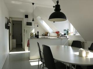 Sølvgade - Close To The Palace - 607 - Copenhagen vacation rentals