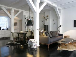 Direct Center - Inner City - 608 - Copenhagen vacation rentals