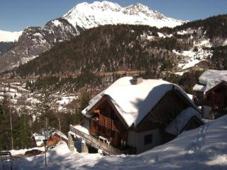 Beautiful ski-in ski-out Chalet in the French Alps - Oz en Oisans vacation rentals