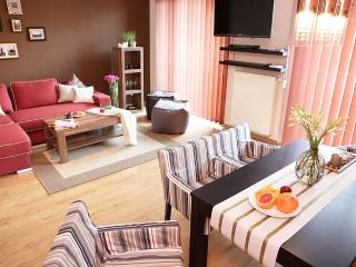 Spacious Kazimierz Apartment  with Private Terrace - Krakow vacation rentals