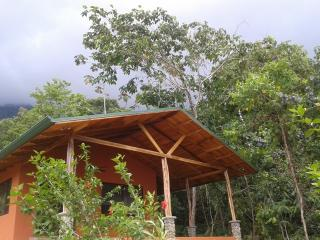 Casa Dulce...a sweet retreat between Primary Forest and Pacific Ocean - Ojochal vacation rentals